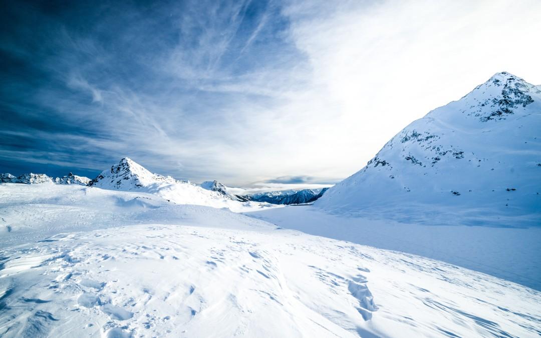 Snowmageddon Survival